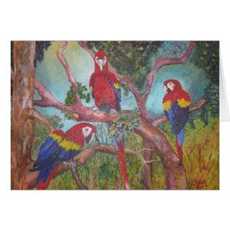 Cartes Trio tropical