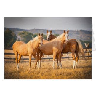 Cartes Trois poneys de palomino