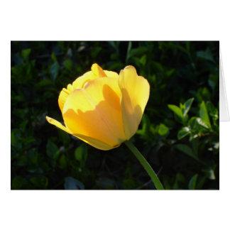 Cartes Tulipe jaune