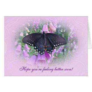 Cartes Un meilleur papillon de machaon de Spicebush de