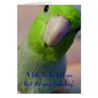 Cartes Une petite birdie m'a indiqué…