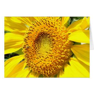 Cartes Une peu d'abeille de miel