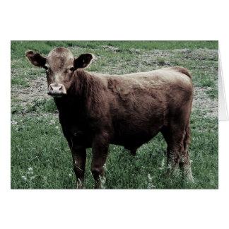 Cartes Vache seule