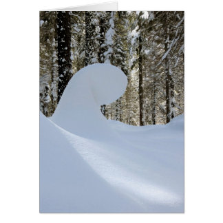 Cartes Vague 2014 de neige