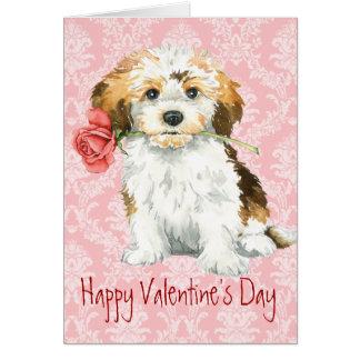 Cartes Valentine Havanese rose