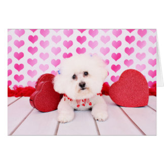 Cartes Valentines - Bichon Frise - Lilly
