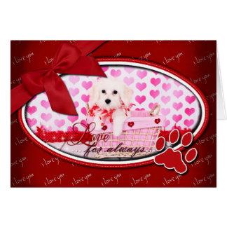 Cartes Valentines - coton de Tulear - Sophie
