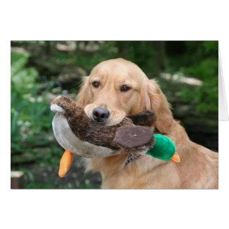 Cartes Valerie et son canard