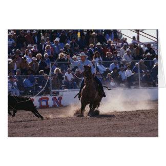 Cartes Veau Roping de cowboy au rodéo