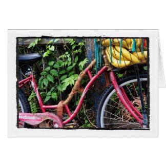 Cartes Vélo de Kali