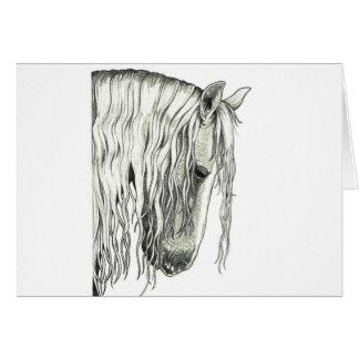 Cartes Véritable cheval romantique andalou