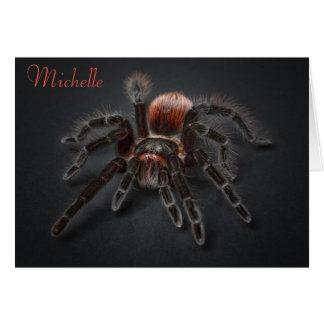 Cartes Vieillissement effrayant d'Arachnophobia