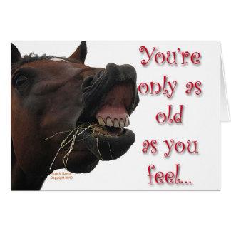 Cartes Vieux en tant que vous sentez le cheval drôle