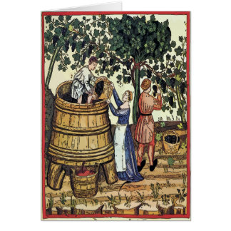 Cartes Vieux raisins de sélection de vignoble