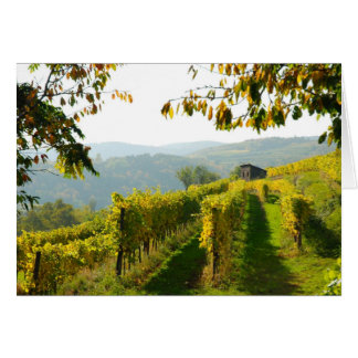 Cartes Vignoble