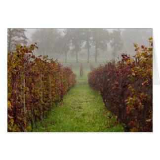 Cartes vignoble dans le brouillard en automne
