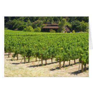 Cartes Vignoble d'établissement vinicole de Napa Valley