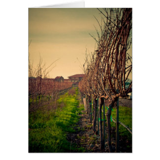 Cartes Vignobles de la Californie