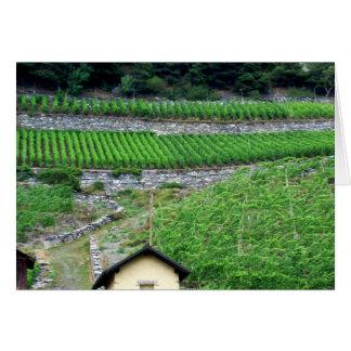 Cartes Vignobles en Suisse
