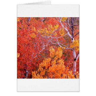 Cartes Ville d'arbres d'Aspen d'automne des roches Idaho