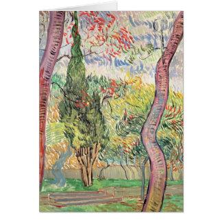 Cartes Vincent van Gogh | le jardin de l'hôpital de St