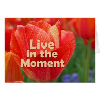 Cartes Vivez dans la tulipe du moment w/vibrant