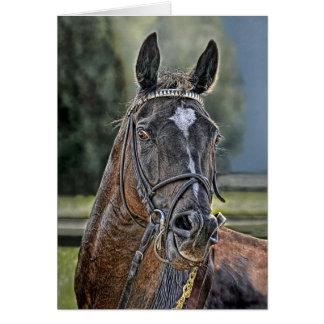 Cartes Voie de cheval de course immédiatement