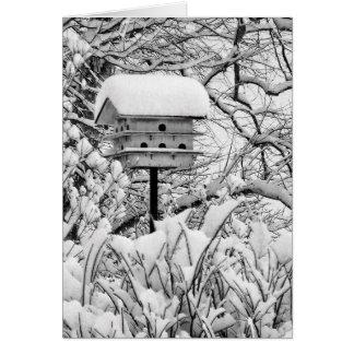 Cartes Volière d'hiver