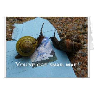 Cartes Vous avez le snail mail
