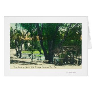 Cartes Vue de l'étang de Hot Springs