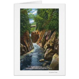 Cartes Vue des automnes et du pont de rivière d'Ausable