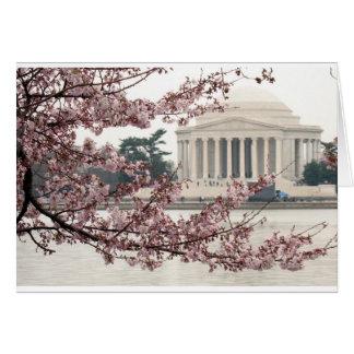 Cartes Washington DC de fleurs de cerisier