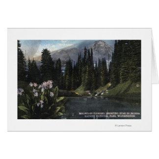 Cartes Washington - un parc national plus pluvieux, Sta