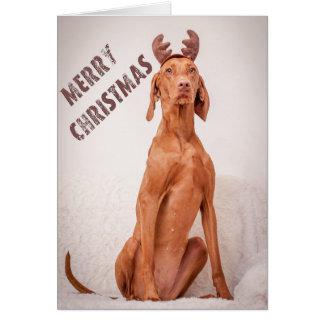 "Cartes Xmas Card/Christmas Card «Magyar Vizsla """