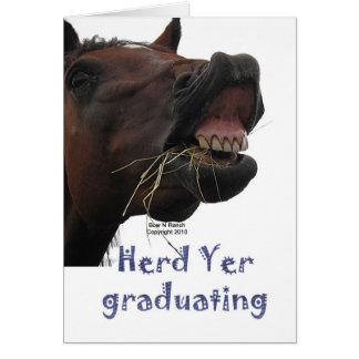 Cartes YER de troupeau recevant un diplôme le cheval