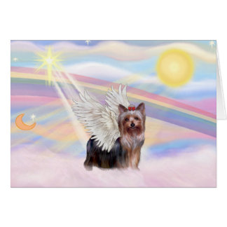 Cartes Yorkshire Terrier