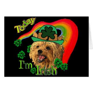 Cartes Yorkshire Terrier de St Patrick
