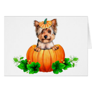Cartes Yorkshire Terrier Halloween Jack-o'-lantern