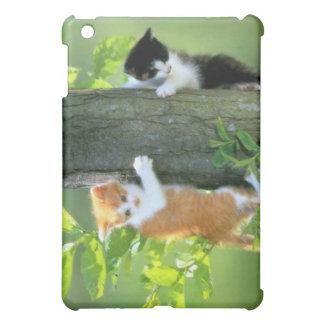 Cas de chatons coque pour iPad mini