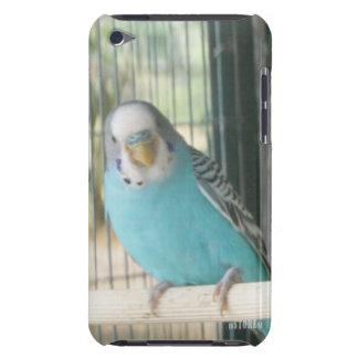 Cas de contact du règne animal HD iPod - oiseau bl Étui Barely There iPod