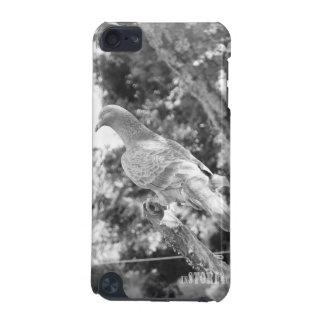 Cas de contact du règne animal HD iPod - pigeon Coque iPod Touch 5G
