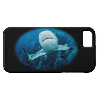 Cas de l iPhone 5s de requin de récif iPhone 5 Case