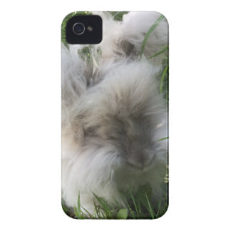 "cas de l'iPhone 4 - lapin angora anglais ""Bradley Coque Case-Mate iPhone 4"