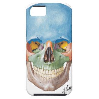 Cas de l'iPhone 5 de crâne de Netter Coques iPhone 5