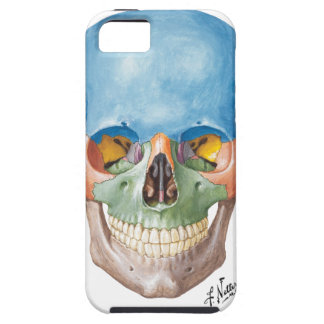 Cas de l'iPhone 5 de crâne de Netter Coque iPhone 5 Case-Mate