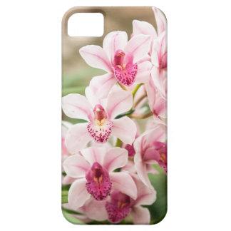 Cas d'IPhone 5/5S de fleur Étuis iPhone 5