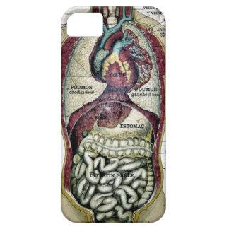 Cas français vintage de Coque-Compagnon d'anatomie Coques Case-Mate iPhone 5