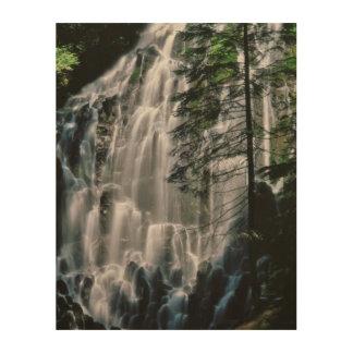 Cascade dans la forêt, Orégon Impression Sur Bois