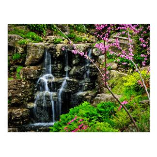 Cascade de cascade carte postale