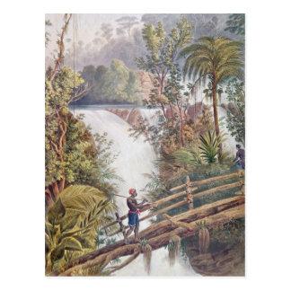 Cascade d'Itamaraty dans le Serra DA Estrela Carte Postale